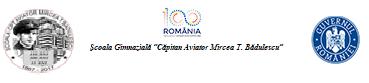 """Şcoala Gimnazială """"Căpitan Aviator Mircea T. Bădulescu"""" Buzău"""